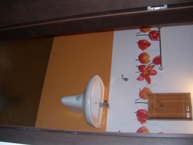 Апартамент-Студио в Созопол,санитарен възел